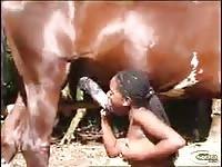 Pretinha linda chupando e rebolando no cavalo