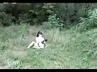 Rivate dog show aprdv004 part