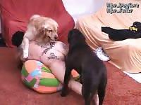 Mistress beast mbs dog gore