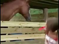 Horny teen gets naked in front of your horse - Horse Porn