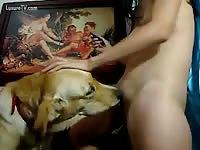 Dog and teen girl webcam 11 - Dog Porn