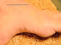 Maggots On Foot Gaybeast - Zoo Xxx Sex Movie