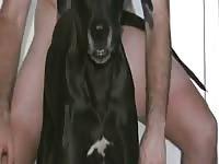 Man And Dog2