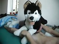 Man Pawing Off With 3 Plush Dog Gaybeast Rip - Bestiality Sex Video