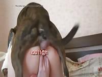 [ Team Russia -Animal Sex Val