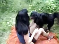 Animal perversions a dog in my hairy pussy