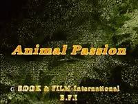 Apdv182 big black dog pleasure