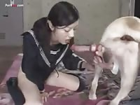 Asian dog sex 1