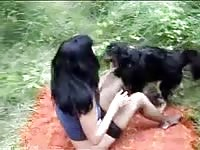 Zootube1: Brunette bitch makes dog horny by handjob and sucks his dick in bestiality action