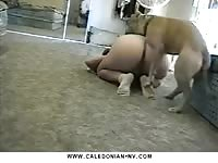 Girl with big ass fucked by boxer in dog porn