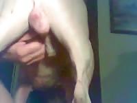 Eat Dog Balls Gaybeast - Beastiality Sex Video