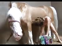 Slender cutie gets horse facial in hot farm sex session