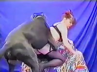 Her dog fucks her while she moans
