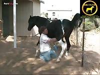Making a horse cum animal porn