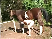 [Horse Porn Movie: Zoo Sex ] male horse blowjob from girl
