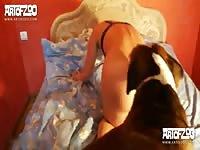 mary meet mary artofzoo [ Hot Animal Porn Film ]
