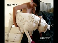 MXXZ VIP pornstar seduces dog to fuck her in animal porn