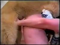 Big tits blonde having dog sex