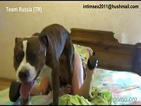 russian2 [ Free Animal Sex DVD ]
