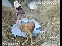 Zooskool: Amateur Zoophilia Sex angel erotic angel [ Animal Sex Film ]